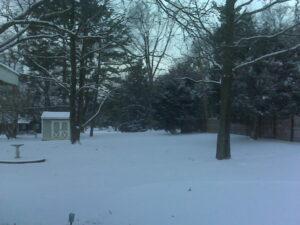 snowy_yard